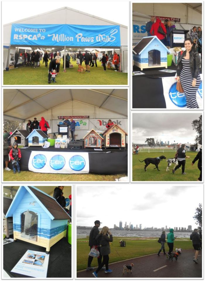 RSPCA_Event_3